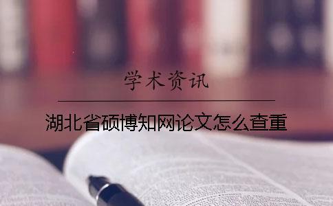湖北省硕博知网论文怎么查重